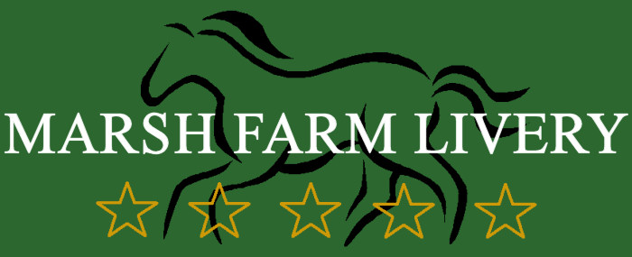 Marsh Farm Livery Stables - 5 star livery yard for your horse - and outdoor arena hire based on the Warwickshire / Cotswolds border.